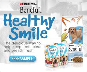 Beneful Free Sample Beneful Dry Pouch Dog Food Sample Must Be