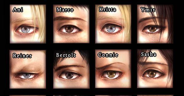 Eren, Armin, Mikasa, Jean, Ani, Marco, Krista, Ymir, Reiner, Bertolt, Connie, Sasha,
