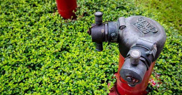 Nfpa 14 2019 Standpipe And Hose Systems Standard Nfpa Fire