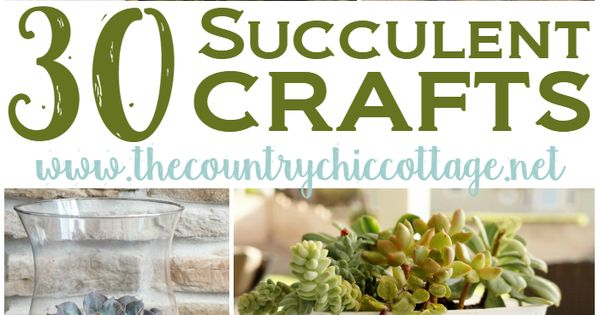 30 Sensational Succulent Crafts - * THE COUNTRY CHIC COTTAGE (DIY, Home