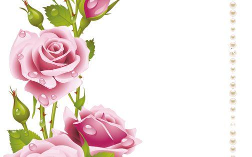 اطارات الورود 2018 سكرابز ورود للتصميم 3dlat Com 1410958937 Flower Frame Rose Frame Flower Art