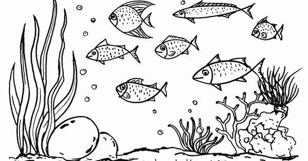 Gambar Mewarnai Lautan Mewarnai Gambar Kapal Laut Ayo Kita Bergembira Sambil Mewarnai Gambar Binatang Laut Gambar Mewarnai I Gambar Hewan Ilustrasi Hewan