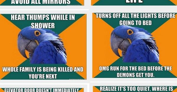 Paranoid parrot...story of my life.