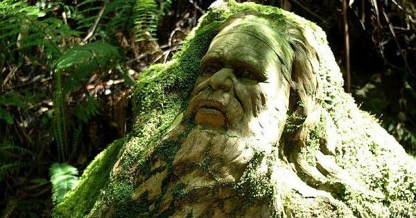 Aboriginal man intricate rainforest sculptures of olinda