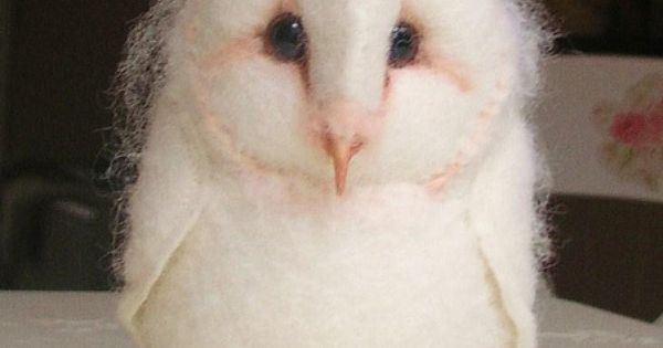 Amazing wildlife - Barn Owl baby photo owls---Needle felted owl by Helen