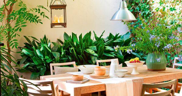 Patio comedor con mesa y sillas de madera plantas - Sillas colgantes del techo ...