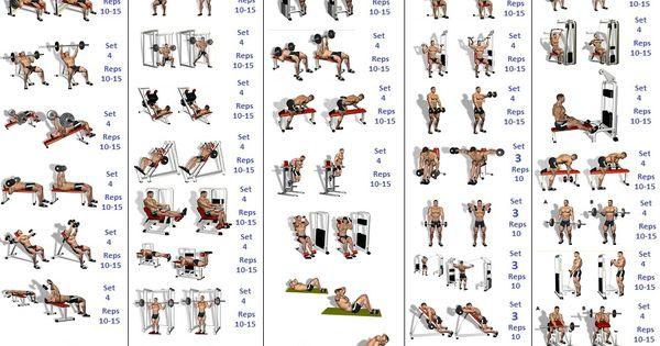 Beginner's Bodybuilding Program | Exercise | Pinterest