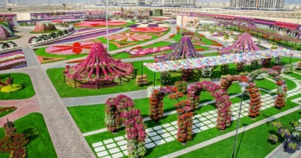 Pin De Planetxo By Alexandra Em Miracle Garden In Dubai Belos Jardins Solo De Jardim Jardim De Sonho