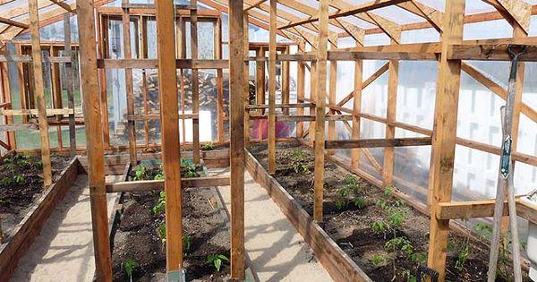 Construction d 39 une serre en bois recouverte de bosch - Serre de jardin adossee au mur ...