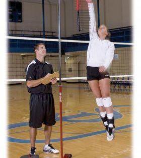 Volleyball Basketball Vertical Jump Training Basketballtraining With Images Vertical Jump Training Basketball Basketball Players