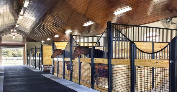 Love this natural-looking barn. Sleek, clean lines, great ventilation, happy horses. Lucas