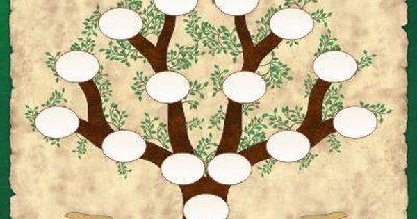 Arbol Genealógico Para Rellenar Plantillas En Blanco Plantillas De árboles Plantillas De árbol Genealógico Arbol Genealogico