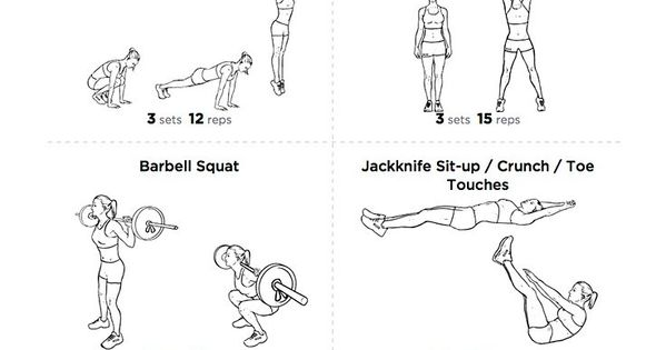 free pdf  love handles and muffin top melter printable gym