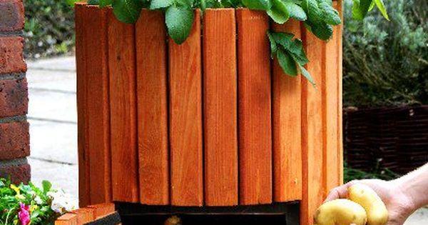 Potato Barrel: How to Plant Potatoes - Wooden Potato Barrel - Potato