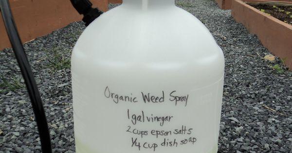1gallon Vinegar 2 Cups Epsom Salt 1 4 Cup Dawn Dish Soap