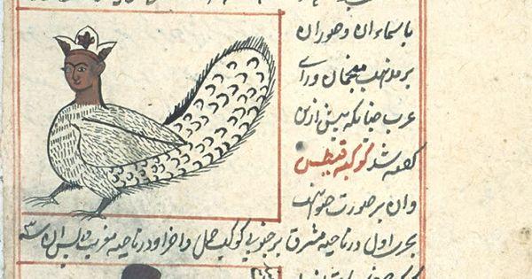 Kitab Aja'ib al-makhluqat wa Gharaib al-Mawjudat ...