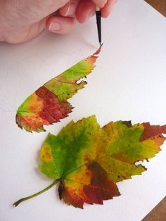 Perfect Fall Leaf Should Contain Every Color Of The Season How To Paint It Lots Of Other Great Posts On T Goruntuler Ile Suluboya Cicekler Boyama Kalemi Cizimleri Cizimler