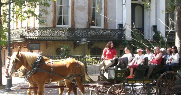 Carriage tours of savannah history ghost tours things for 23 egerton terrace kensington london