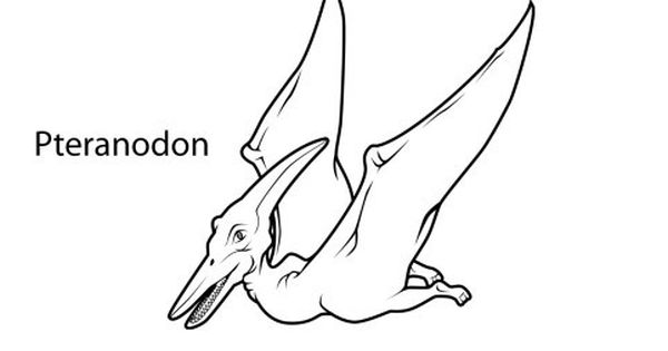 Printable Pteranodon Dinosaur Coloring Pages For Kids Coloring