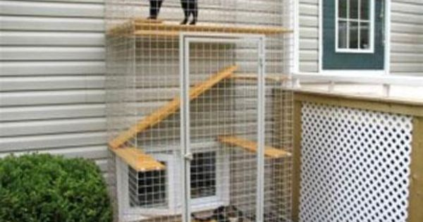 Outdoor Cat Enclosure / Cat Patio / Catio - Images About Cat Patio On Pinterest Cats, Safety And Patio
