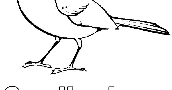 indiana bird coloring pages - photo#13