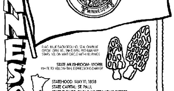 minnesota state symbols coloring pages - photo#11