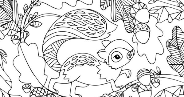 coloring pages for adults realistic squirrels coloring pages