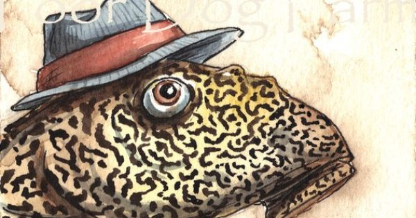 Sucker fish plecostomus in a hat original aceo painting for Sucker fish food