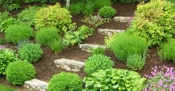 Full Shade Landscaping Ideas For under a deck | Shade Garden Design
