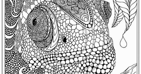 Printable Iguana Adult Coloring Pages Realistic Coloring