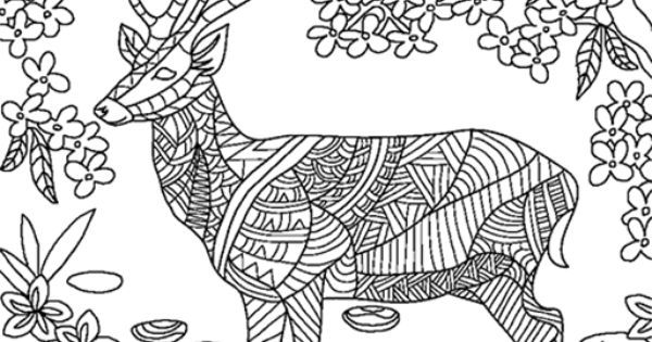Colorfy Adult Coloring For Animals Pages Amazonde Apps Fr Android