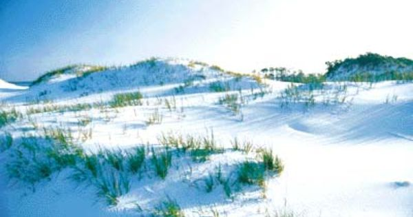 Navarre Beach Fl Sand Like Snow Favorite Places Amp Spaces Pinterest Navarre Beach Florida