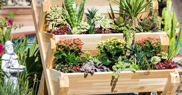Think Of It As Stadium Seating For Your Beloved Plants
