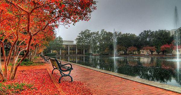 University Of South Carolina Campus University South Carolina Campus University Of South In 2020 University Of South University Of South Carolina South Carolina