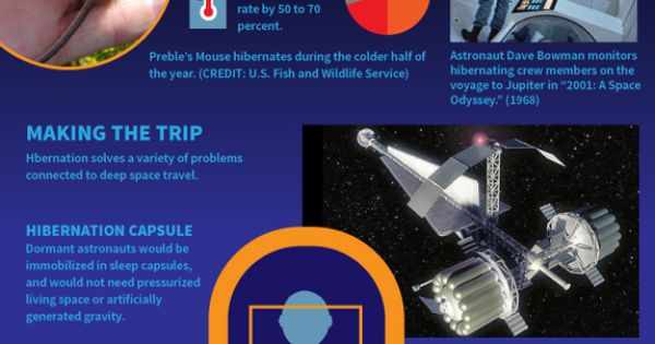 Astronauts, Infographic and Travel on Pinterest