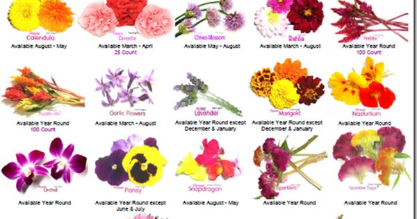 Would like to plant some edible flowers on my deck this ...