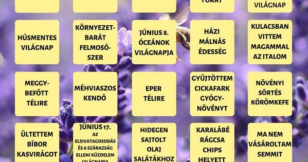 Mágneses bingó purple