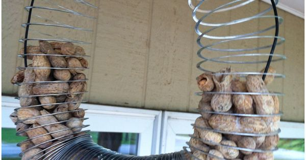 homemade slinky squirrel feeder my things things i have made pinterest squirrel feeder. Black Bedroom Furniture Sets. Home Design Ideas