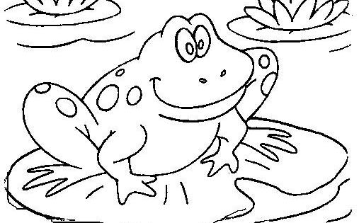 Imgs For Gt Cute Frogs Coloring Pages
