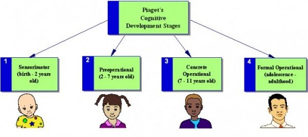 Stages Of Cognitive Development Jean Piaget With Images