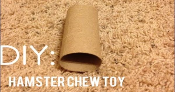 Diy Hamster Chew Toys Hamster Care Hamster Chew Toy
