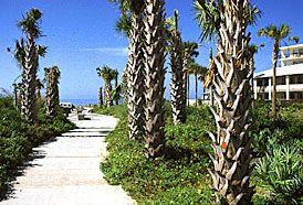 Tiki Gardens Indian Shores Beach Access