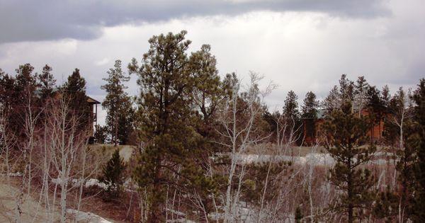 North ridge cabin black hills south dakota cabin on for Cabine black hills south dakota