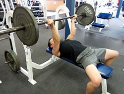Reverse Grip Bench Press Instruction Video Bench Press Bench Workout Dumbbell Workout