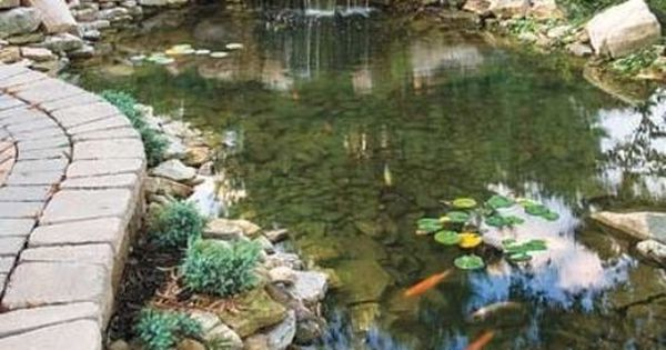 53 cool backyard pond design ideas digsdigs home ideas for Koi pool cue