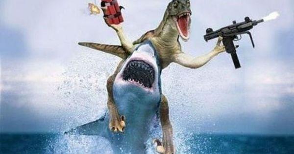 15 'Jaws'-Dropping Shark Memes Circling the Web ...