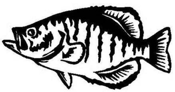 Fish decal fishing decal fishing window decal fish yeti for Fishing yeti decal
