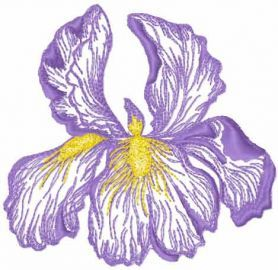 Iris Flower Free Machine Embroidery Design Free Machine Embroidery Designs Machine Embroidery Designs Flower Embroidery Designs