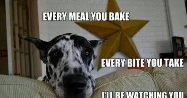 Every Snack You Make Every Meal You Bake Every Bite You Take