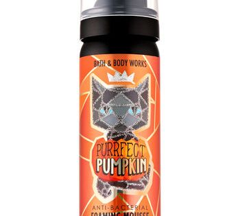 Purrrfect Pumpkin Foaming Hand Sanitizer Bath Body Works